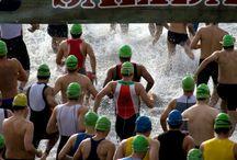 Triathlon / Swim, Bike, Run, Repeat.