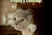 Friday!  / by Cherie