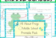 Frogs / by Katherine McBroom