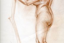 Figure drawings and anatomical studies / Figure drawings and anatomical studies.