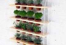 horta vertical para interiore