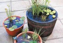 Haveideer / garden