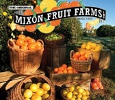 "A Little ""Orange""-spiration  / Here at Mixon Fruit Farms, we love bringing people together! We invite you to pin with us on this board and fill it with anything and everything citrus. Whether that be DIY crafts, delicious recipes, gardening tips or citrus decor. Get creative. Get ""orange-spired."" (LIKE the Mixon Logo to be invited to pin) / by Mixon Fruit Farms"