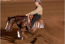 Reining....my other obsession / by Christi Proctor