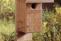 Bird Houses / How to build your own bird houses!