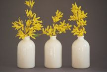 flowers, vases and gardens