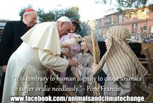 Pope Francis on Animals