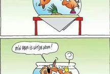 grappig / Humor