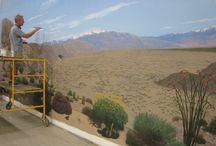 desert murals / by Jennifer Zimmerman