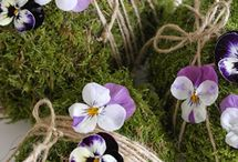 Fleurs & compagnie...