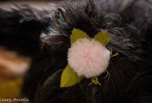 Заколки (Hairclips) / Заколки для животных.
