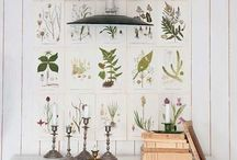 Gallery Wall / by C'estChouetteHome/WollWorks