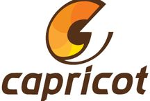 Capricot Technologies / Its a one stop platform for selling hardwares and softwares