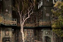 Urban Decay / by Cheryl Bertram