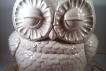 Giving a Hoot about Owls / by Michelle Kaping Johnson