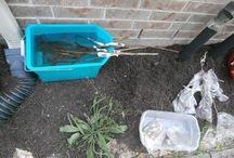 Gardening / Ideas for gardening better/easier