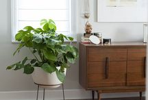 Nooks and Crannies / How to fill a small space with functional furniture.
