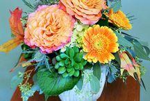 Bloom Originals