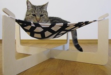 Cute Cat  Products