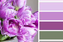 Schematy kolorów