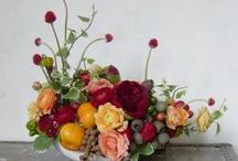 flowers / by Chelsea Kline