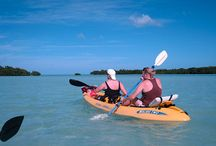 Kayak & Eco Tours in Key West / Key West Kayaking is a fun outdoor thing to do alone or with your friends. Kayak the green waters of key west florida.