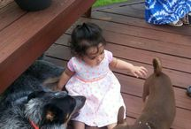 Toddlers And Dogs / 20 Toddlers Who Learned Early Why Dogs Really Are Man's Best Friend