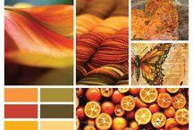 Color Palette / Lovely Color Palette