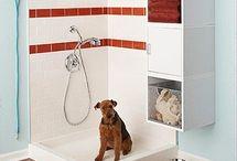 Ванна для собак