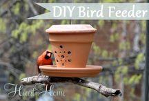 mangeoires oiseaux plus maisons