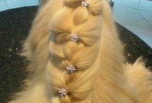 Pet penteados