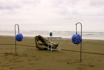 Beach Wedding / by Deb Shaw