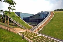 Landscape :: Green Roofs : Intensive