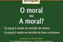 Português e suas regras