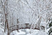 Winter ❄ Wonder❤Landscamp