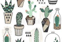 patterns cactus