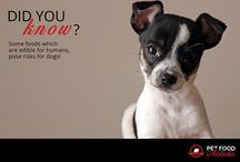 Dog facts. / Nutritional facts for your best friend.