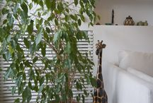 Eur Apartment / Apartment 140 sqm Roma, Italy – 2014 project by: Manuela Tognoli  Interior home renovation in Rome – Eur