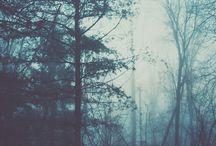 Places*