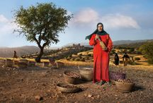 Moroccan Women's Cooperatives