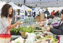 Traditional Market Idea
