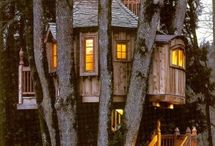 Awesome Tree Houses / by Stephanie Pfeffer