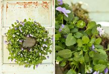 Gardening/Outside / by Julie Wood