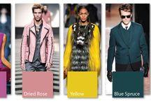 Colour - Forecast Fall 2013
