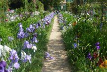 Monet Garden ...