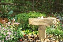 gardening ideas / My garden