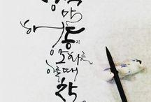 Calligraphy/Typograqhy