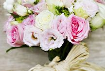 Nicki's wedding ideas/options and more / by Krystal Smith