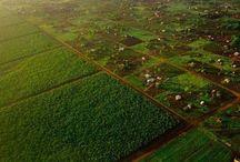 Menghemat Lahan Pertanian