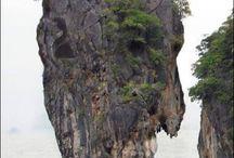 Petrified giants